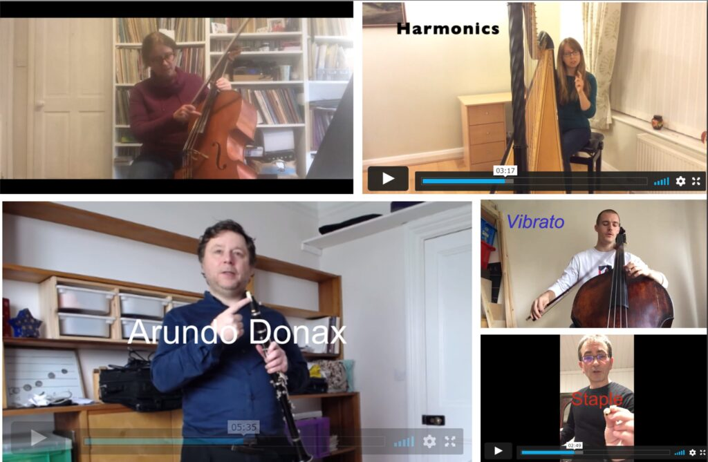 Collage of Musicians presenting through online video